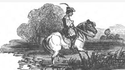 scemo cavallo